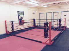 Floor Standing Boxing Ring