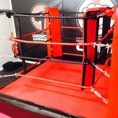 Micro Boxing Ring