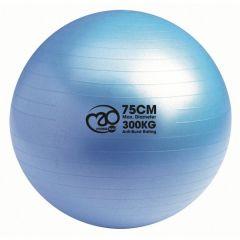 Fitness Mad Swiss Ball + Pump